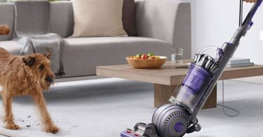 Dyson Ball Animal 2 black friday